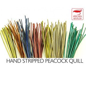 Polish Quills Stripped Quill