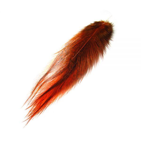 coq_de_leon_burnt _orange_1